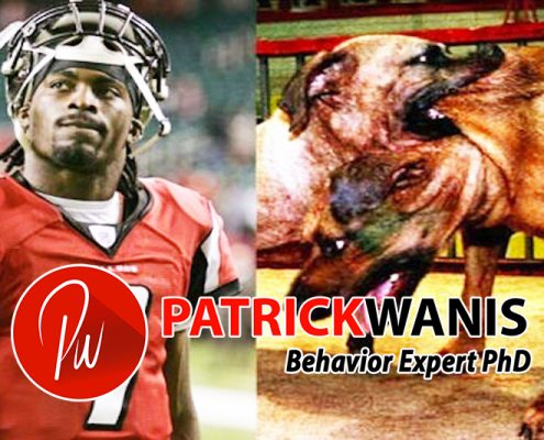 Michael Vick and The O.J. Effect